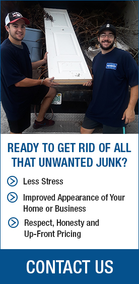 Remove Unwanted Junk